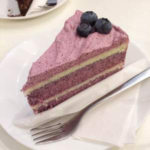 sweet-vaasa-naked-blueberry-cake