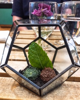 Terrarium of truffles Bumble & Oak