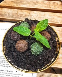 The Tasting Table Cambridge truffles Bumble & Oak